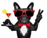 kisspng-dog-cocktail-glass-martini-cocktail-party-glasses-dog-5ad9f5be30f131.7790937115242336622005